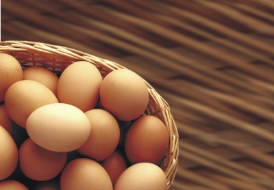 about-eggs